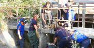 Otomobil Kanala Uçtu... 1 Ölü 2 Yaralı